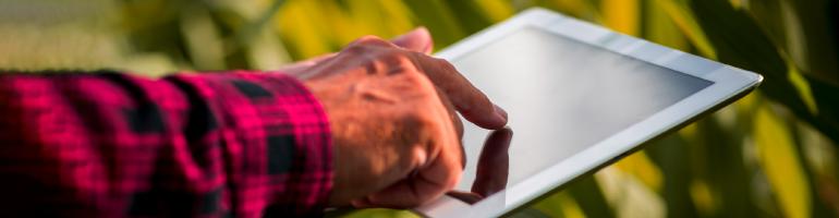 Como uma solução de gestão pode ajudar empresas do agronegócio?